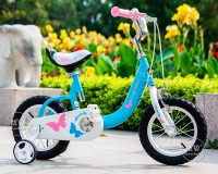 Детский велосипед Royal Baby Butterfly Steel 14